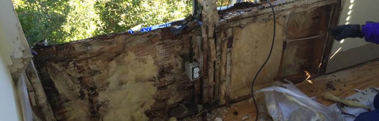 home deterioration of windows