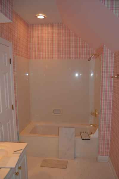Before Shot of Master Bathtub